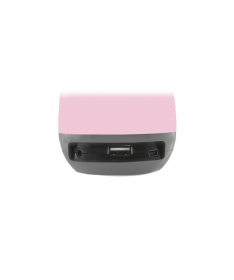 Cassa Audio Bluetooth SP-300 BT Rosa