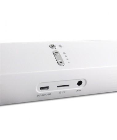 Cassa Bluetooth - Ingresso Micro SD V. 3.0 - Bianca